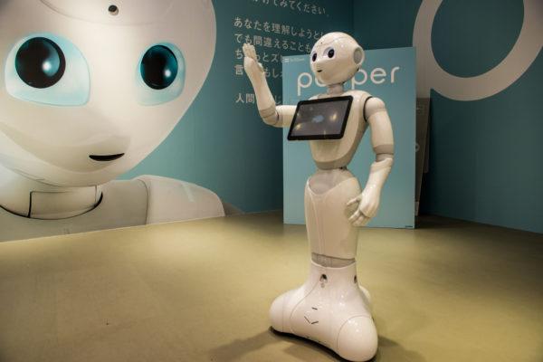 14667534483 b67a66aa9e k e1489044100830 - Expertos en seguridad cibernética se acojonan cuando piensan en robots domésticos