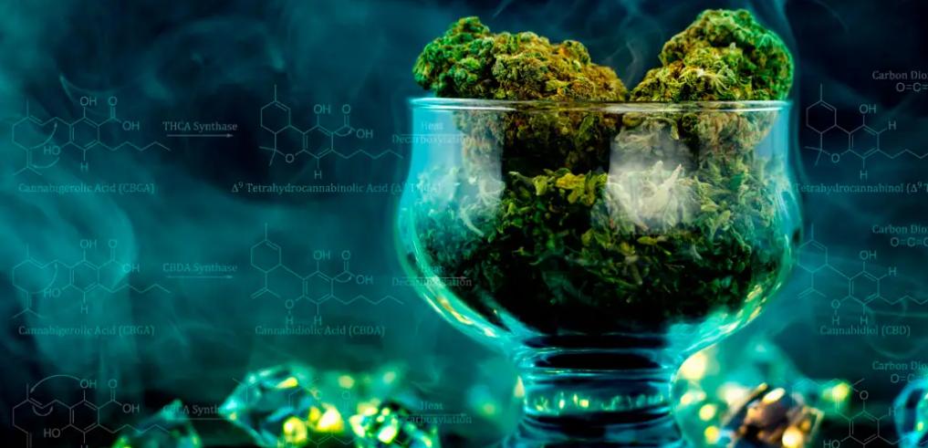 ¿Conoces usos terapéuticos de los cannabinoides?