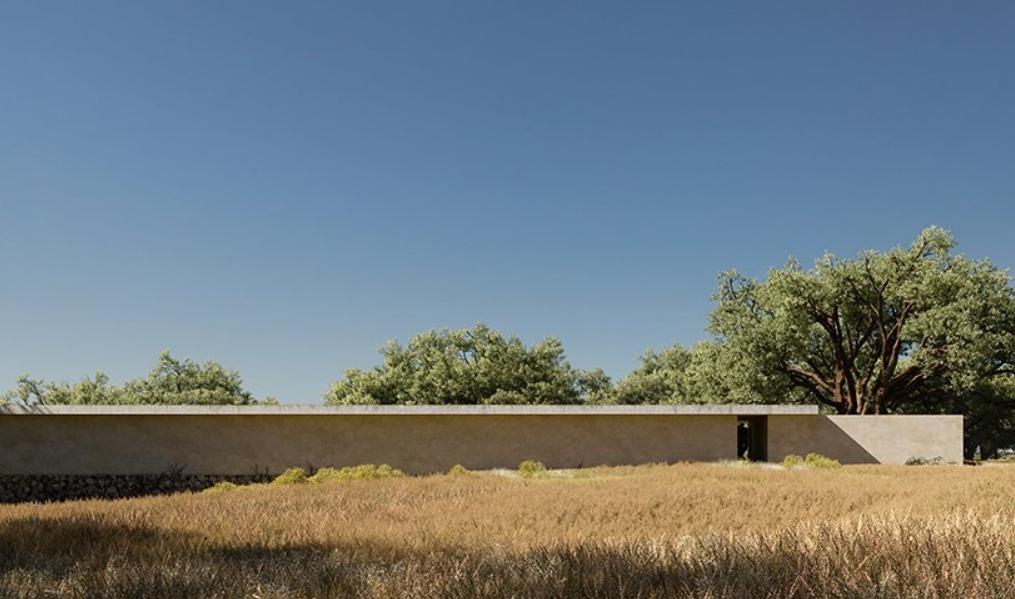 estudios de arquitectura: joão cepeda 3