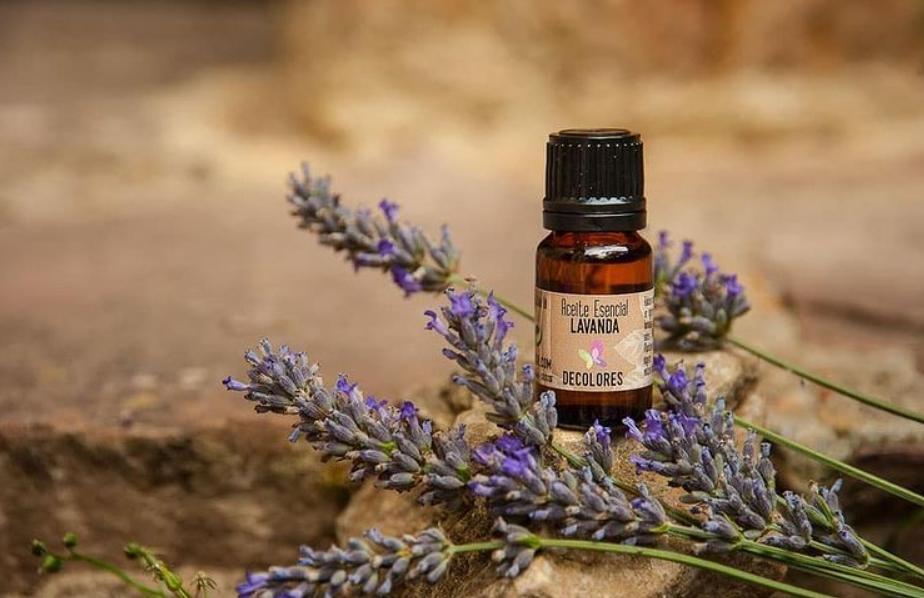 Conoce los beauty tips para cuidar la piel en primavera 2