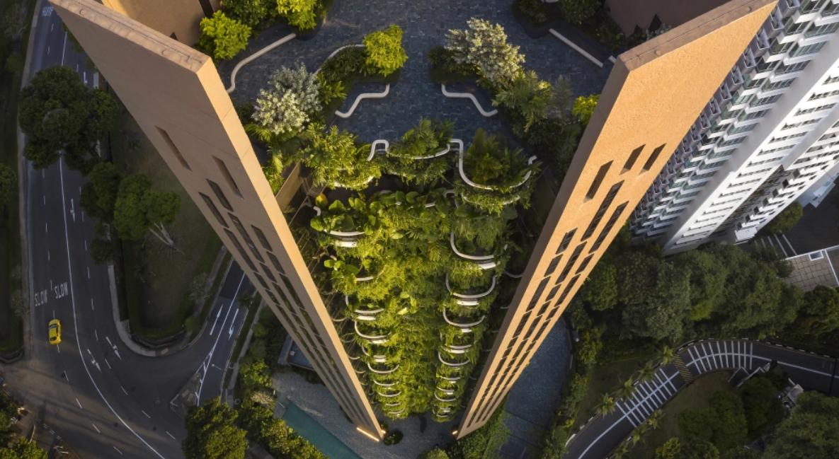 La vida vertical tiene sus ventajas: incorporandoárboles y plantas en balcones 1