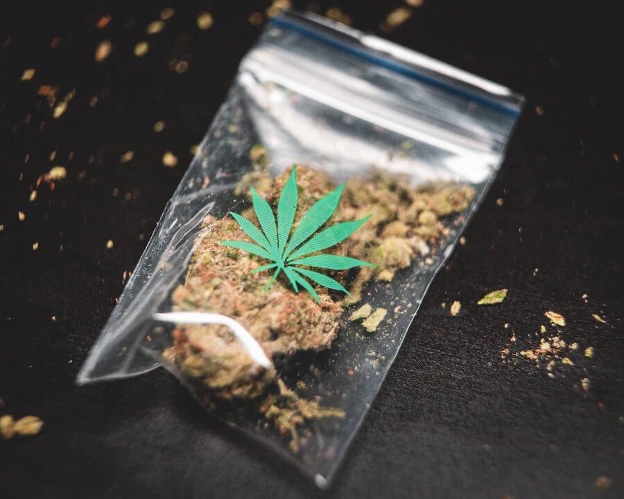 El tema de la marihuana medicinal 1