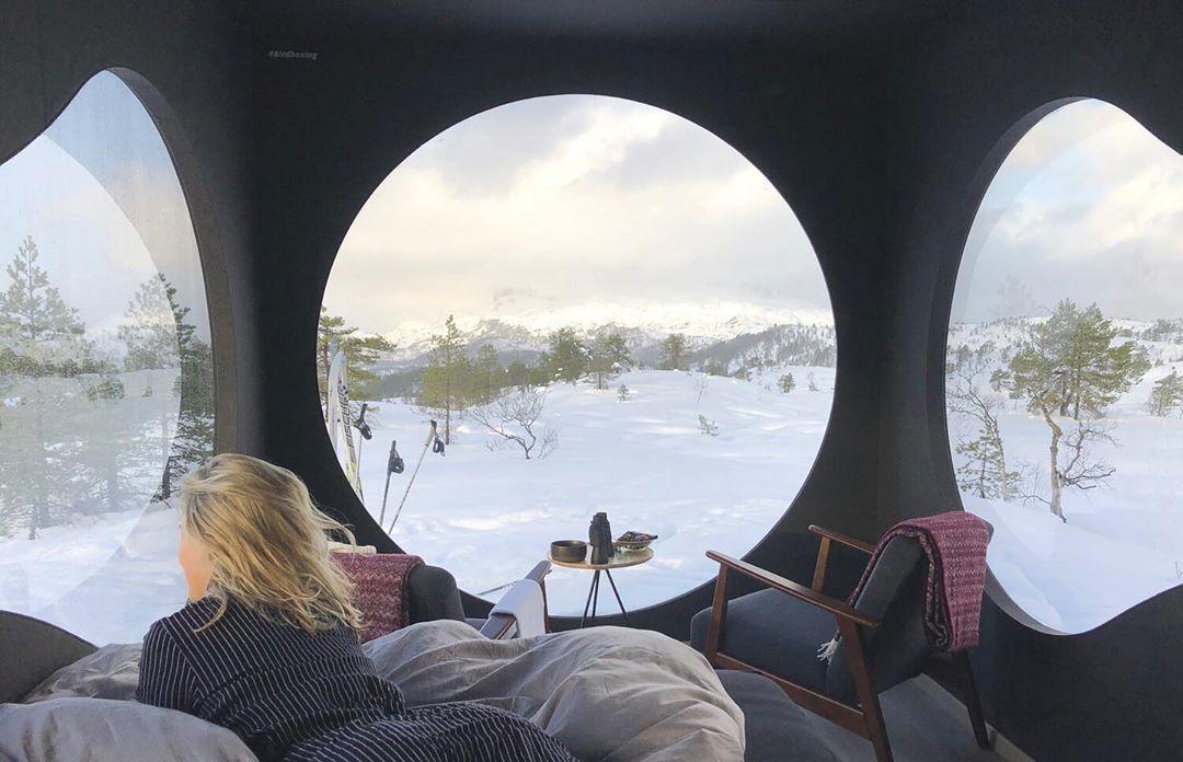 Birdbox - la cabaña minimalista para aventureros. 2